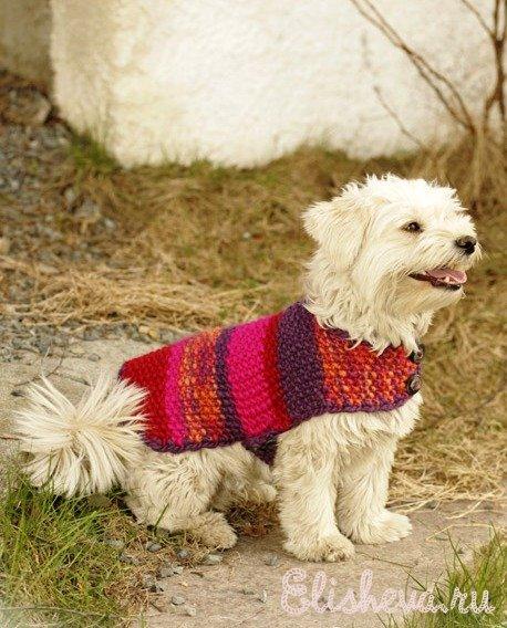 Накидка для собаки вязаная спицами и крючком