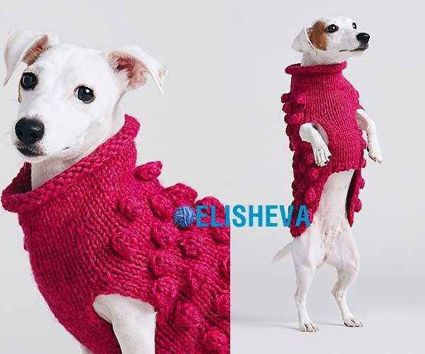 Комбинезон для собак мелких и средних пород вязаный спицами