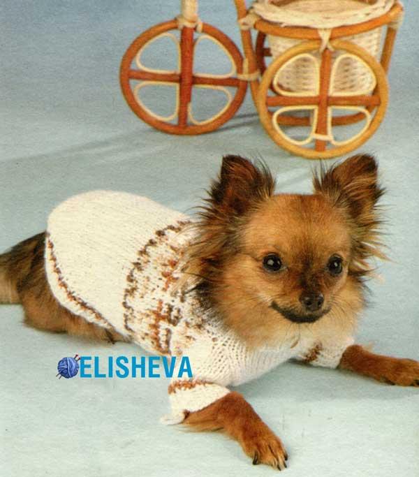 Свитер для чихуахуа и других мелких пород собак, вязаный спицами
