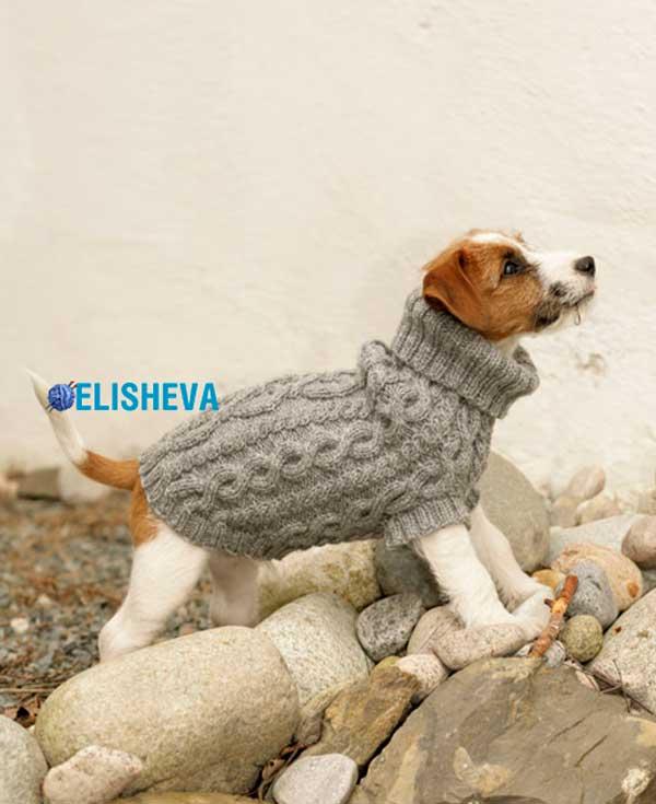пальто для собаки с рельефным фантазийным узором от Drops Design