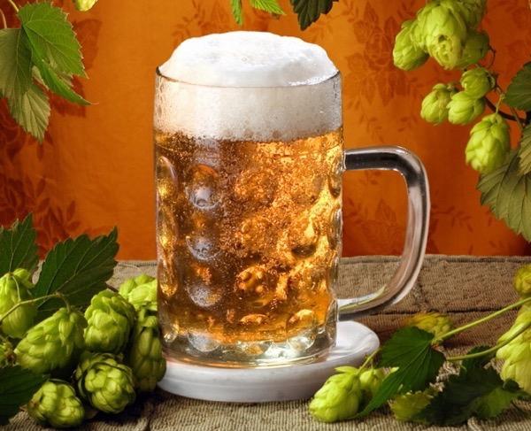 простые рецепты домашнего пива